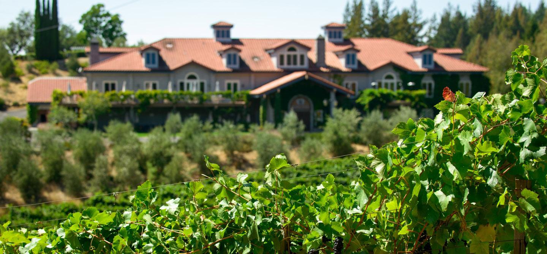 Byington Vineyard Winery Weddings Corporate Events Wineries In Santa Cruz Mountains Bay Area California